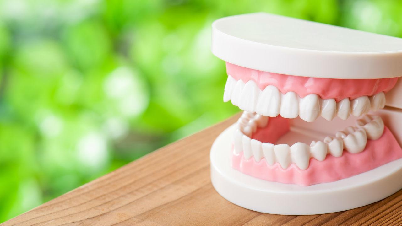 北海道子供の歯を守る会
